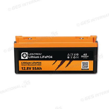Batteria Liontron 55 Ah con BMS